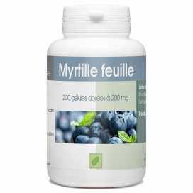 Myrtille Feuille - 200 mg - 200 gélules