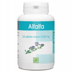 Alfalfa 230 mg - 200 gélules