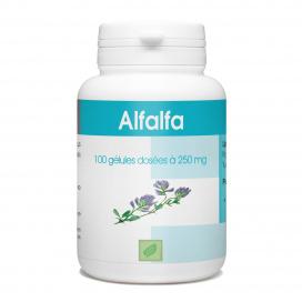 Complement alimentaire Alfalfa - 100 gelules