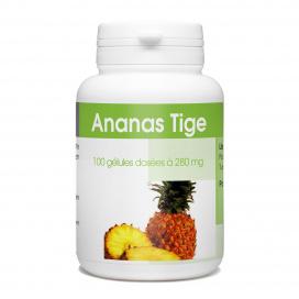 Ananas - 100 gélules