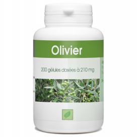 Olivier feuille- 210 mg - 200 gélules