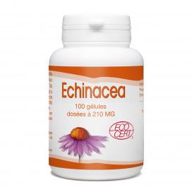Echinacea Bio - 210 mg - 100 gélules