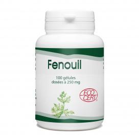 Fenouil Bio - 250 mg - 100 gélules