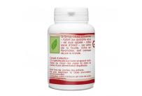 Ginkgo Biloba Bio - 250 mg - 100 gélules