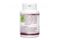 Mélisse Bio - 250 mg- 100 gélules