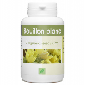 Bouillon Blanc - 230 mg - 200 gélules