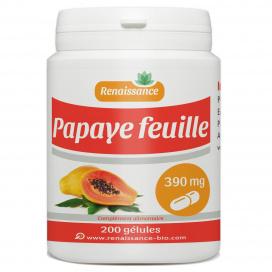 Papaye Feuille - 390mg - 200 gélules
