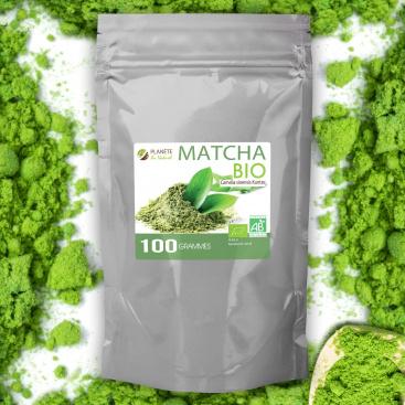 Matcha Bio en poudre - Thé Vert - 100g