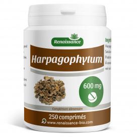 Harpagophytum - 600 mg - 250 comprimés