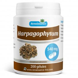 Harpagophytum - 540 mg - 200 gélules