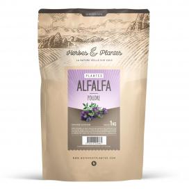 Alfalfa (luzerne) - 1 Kg de poudre