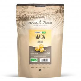Maca Bio poudre - 1 kg