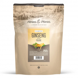 Ginseng Rouge Panax 250 gr - Poudre