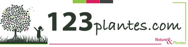 123plantes